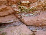 Diagonal fault line displacing strata in the cliff at Waterside Beach in New Brunswick