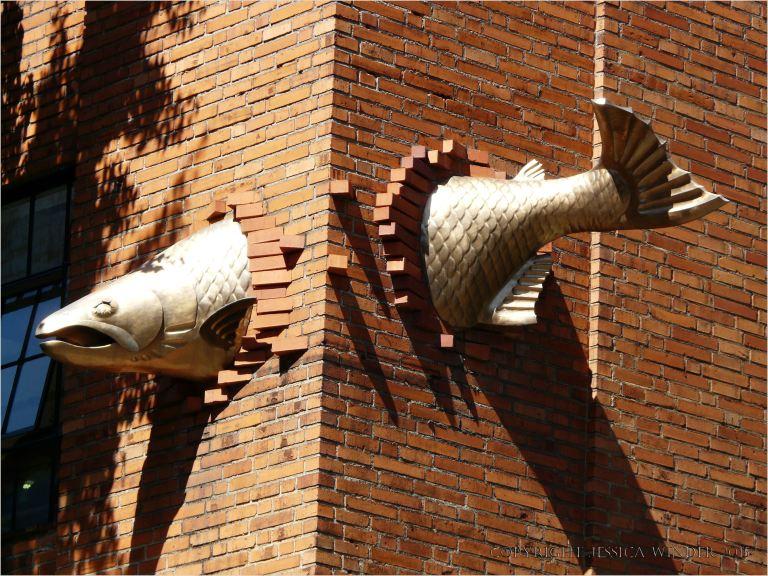 Fish crashing through a wall in Portland, Oregon, USA