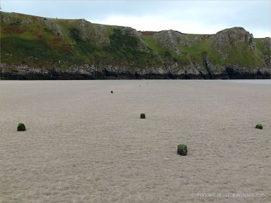 View looking south towards Rhossili cliffs showing stumps of wooden posts in the sand belonging to an unidentified structure