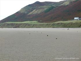 View looking towards Rhossili Down with stumps of wooden posts belonging to an unidentified structure on Rhossili beach