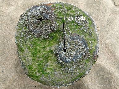 Stump of a wooden post with two iron rods embedded legthwise belonging to an unidentified structure on Rhossili beach