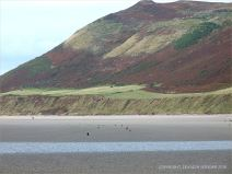 View looking across Rhossili beach towards Rhossili Down with stumps of wooden posts belonging to an unidentified structure