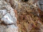 Detail of Carboniferous Limestone at the east end of Pwll Du Bay