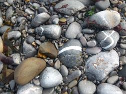 Pebbles at the water's edge in Pwll Du Bay