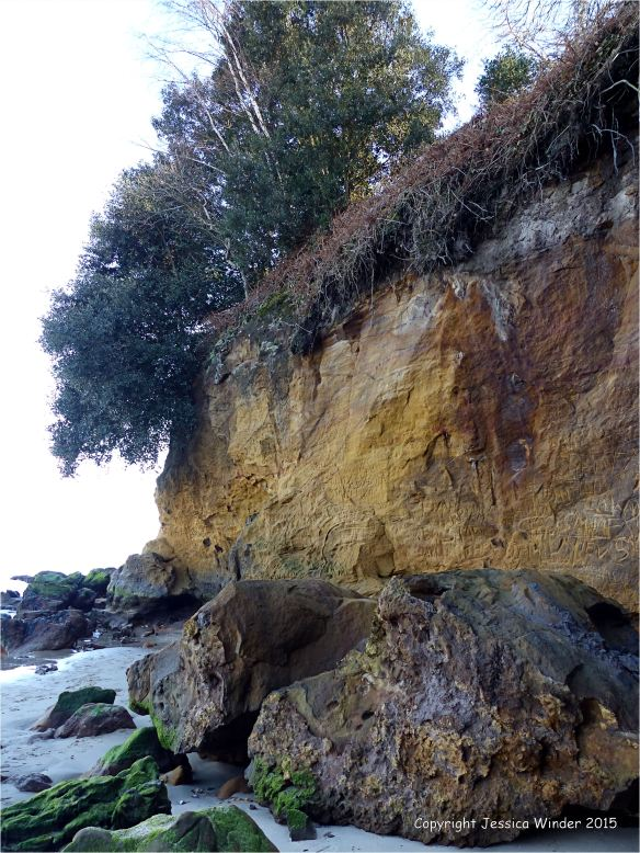Orange cliff rocks on the north side of Redend Point in Studland Bay, Dorset, England.