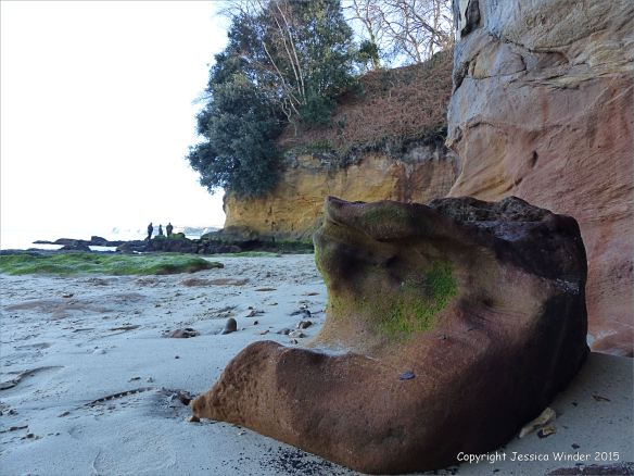 Boulder and cliff on the north side of Redend Point in Studland Bay, Dorset, England.