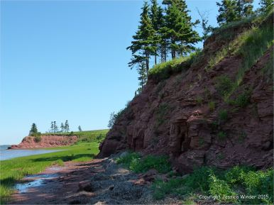 View along the shoreline at Lord Selkirk Provincial Park in Prince Edward Island, Canada, with red Permian rocks.
