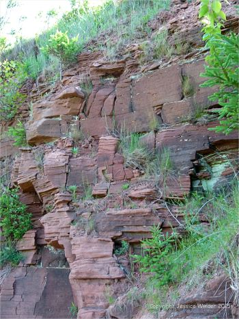 Red bed Permian strata in low cliffs at Lord Selkirk Provincial Park on Prince Edward Island