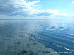 Radiating ripples from the passage of the ferry across the Northumberland Strait, with reflected cloud patterns