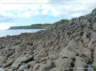 View from the raised palaeo-karst limestone surface at Caswell Bay
