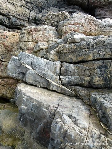 Rock colour and texture in Caswell Bay Mudstone strata