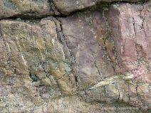 Rock colour and texture in Caswell Bay Mudstone Formation strata