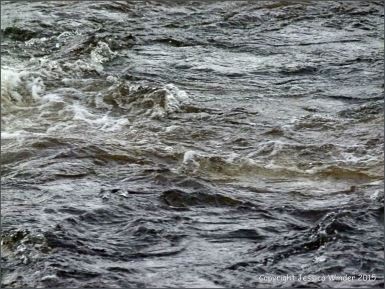 Rough surface water texture in a fast flowing river