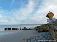 Old wooden sea defence structures on the shore