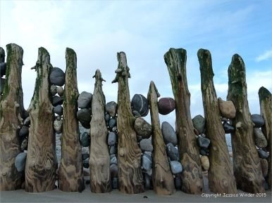 Weathered wooden posts of a beach groyne with trapped pebbles
