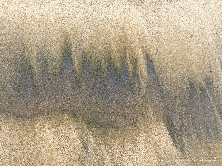 Natural patterns of dark streaks along the driftlines of a sandy beach