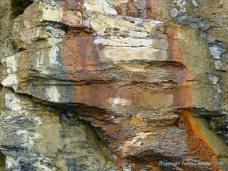 Detail of cliff strata from Kimmeridge Bay