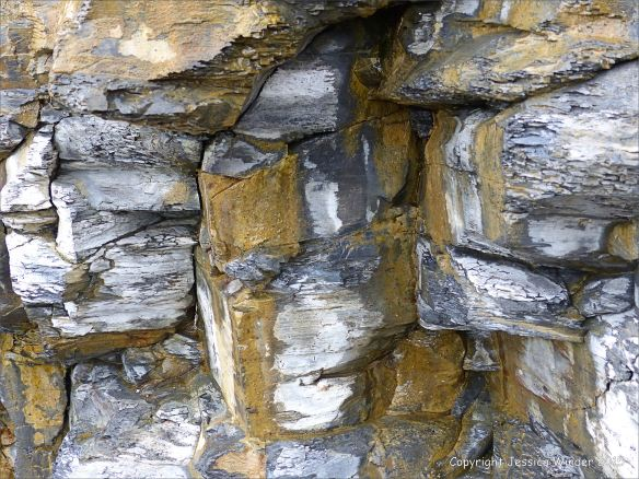 Detail of cliff strata from Kimmeridge Bay