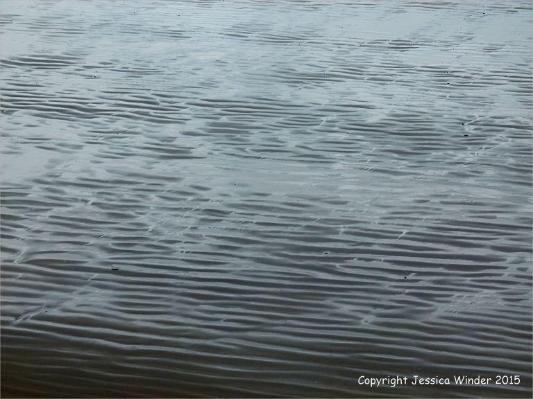 Silvery sand patterns at Rhossili Bay