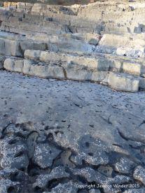 Limestone rock texture on the Gower coast