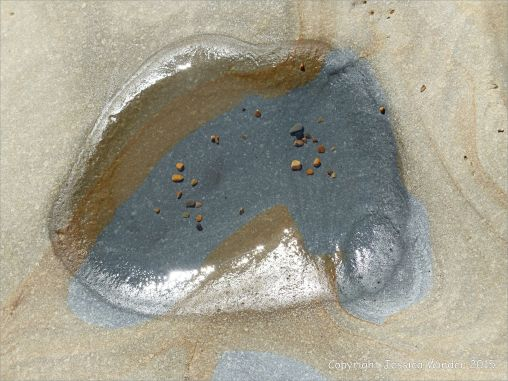 Detail of structure in a beach boulder