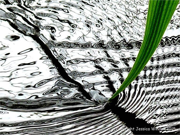 Macro-photograph of reflection patterns made by a trailing leaf in a small river