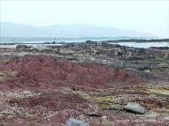 Red sandstone Devonian rocks on the seashore
