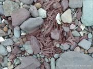 Shattered pieces of red sandstone amongst beach stones