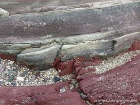 Devonian sandstone strata on the shore at Fermoyle