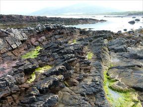 Devonian sandstone strata on the beach at Fermoyle