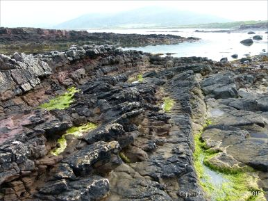 Devonian sandstone strata on the beach at Fermoyle