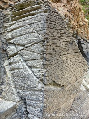 Cornish rock texture and pattern