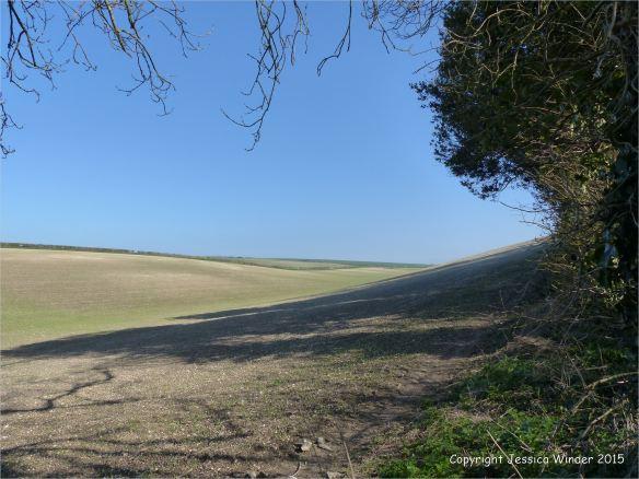 Seasonal changes in the arable landcape