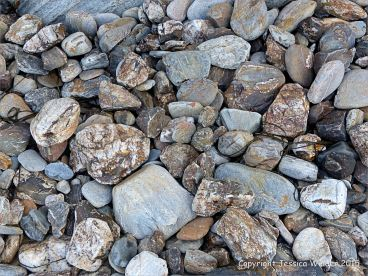 Beach stones from the Mylor Slate Formation at Porth Kidney Sands