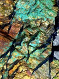 Bright blue-green patch on Mylor Slate Formation rock