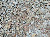 Beach stones near Cape Enrage