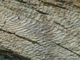 Sand ripple patterns in rocks at Cape Enrage