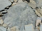 Natural pattern in a beach boulder at Cape Enrage