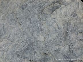 Natural pattern and texture in a beach boulder at Cape Enrage