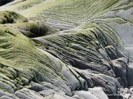 Natural texture and pattern in rocks at Cape Enrage