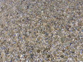 Pebbles and seashells on the beach at Whiteford