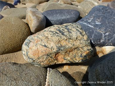 Pebbles from a sand spit at Whiteford Point