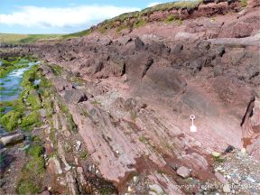 Colour, texture, and pattern in Old Red Sandstone strata in South Wales