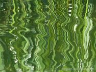 Natural abstract image of reeds reflected in water