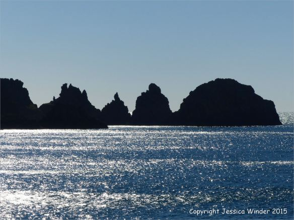 Silhouetted rocky outcrops of the Pea Stacks in Guernsey