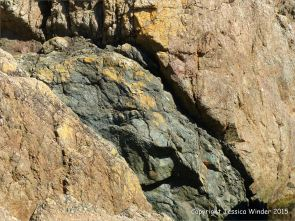 Contrasting rock textures at Moulin Huet Bay
