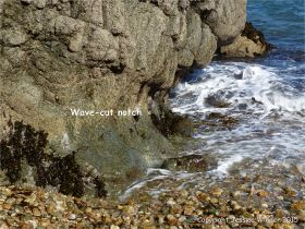 Wave-cut notch at the base of cliffs in Marble Bay
