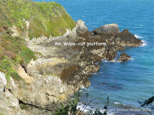 Looking down on the wave-cut platform at Marble Bay