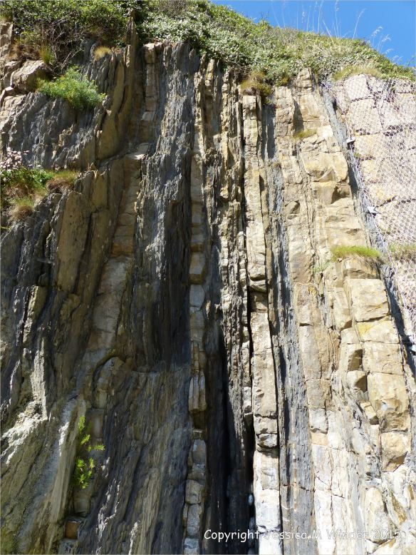 Close-up detail of vertical Carboniferous Avon Group limestone rock strata with shales on the seashore at Church Doors on the South Pembrokeshire Coast in Wales