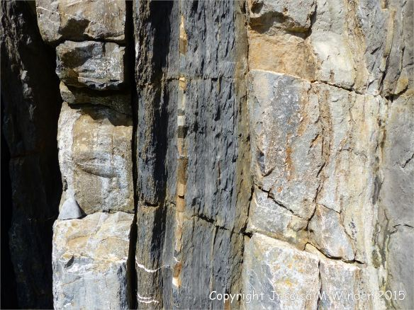 Close-up detail of vertical Carboniferous Avon Group limestone rock strata with shales strata on the seashore at Church Doors on the South Pembrokeshire Coast in Wales